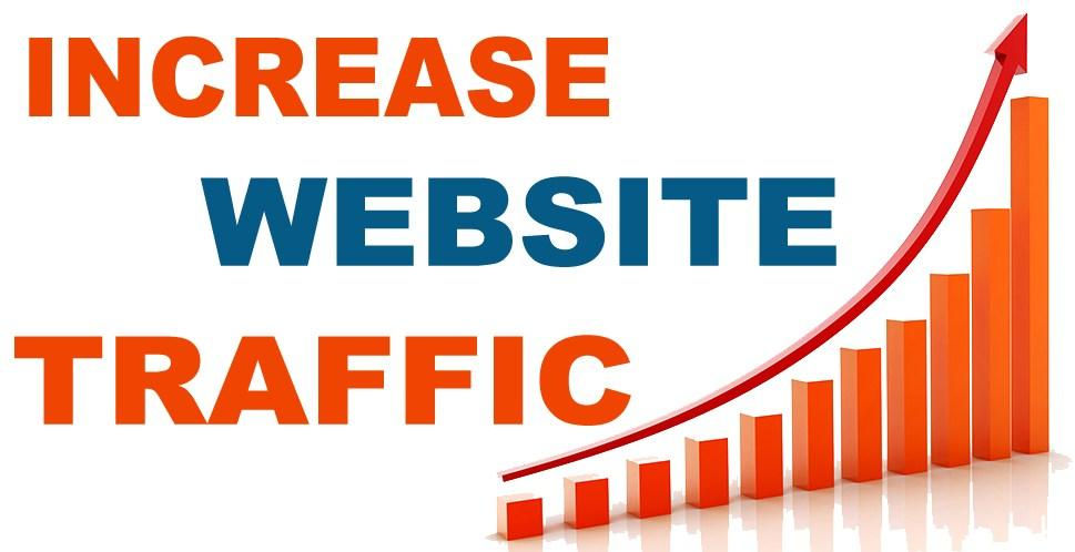 Earn Website Traffic Social and Organic